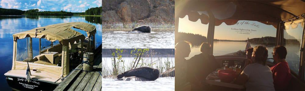 Saimaa seal watching tours by Ecoboat